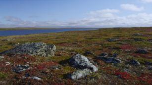 926192078-kuujjuaq-nunavik-quebec-province-toundra